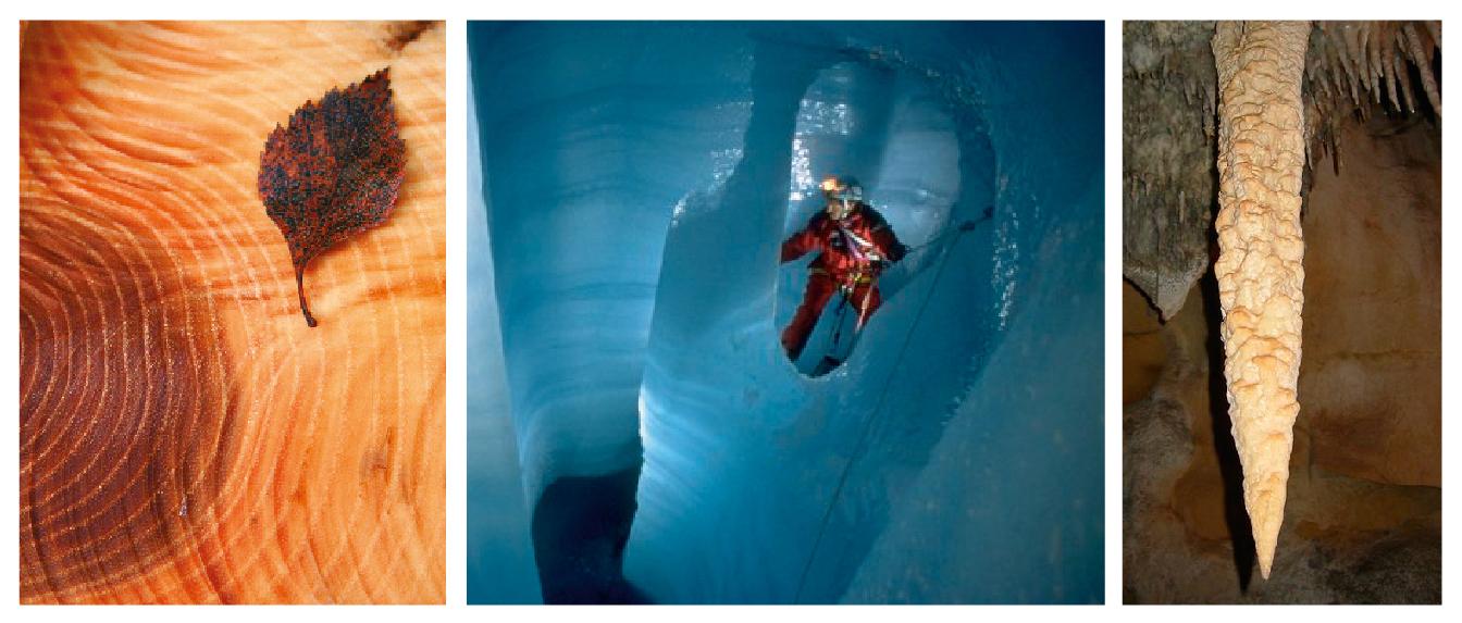 Klimaarkiv: Treringer og isbre