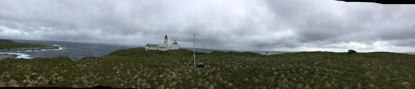 Hornøya. photo by Michel Mesquitas