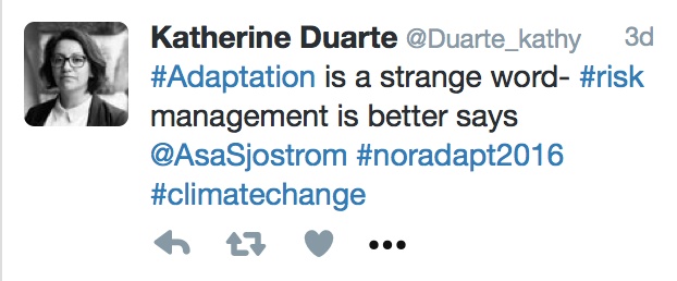 Tweet by katherine duarte